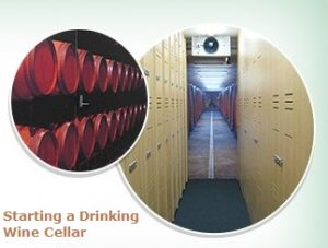 Thinking of Starting a Drinking Wine Cellar